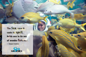 ... it net of wonder forever. Jacques Cousteau Inspirational Ocean Quotes