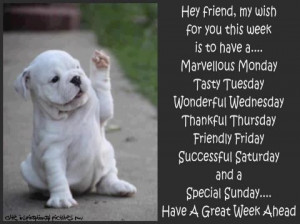 Have a great week ahead!Bulldogs Puppies, Cookies, Hands, English ...