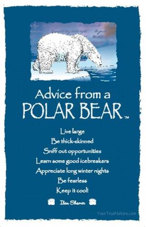 Spirit Totem Animals: #Advice from a #Polar #Bear.