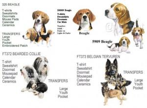 Breeds:Beagle-Belgian Tervuren