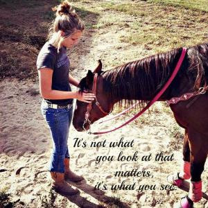 Cowgirl Horse Quotes (24)