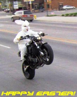 easter bunny wheelie Image