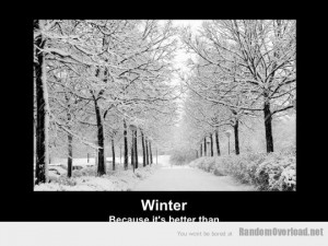 hate winter quotes funny