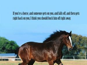 animals quotes horses 1024x768 wallpaper Animals Horses HD