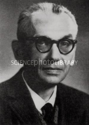 Kurt Gödel Photo