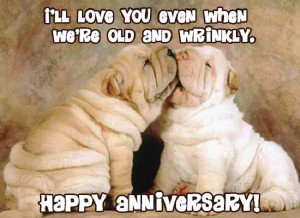Thank You Quotes For Husband On Anniversary Funny anniversary quotes