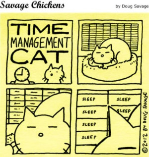 Funny Quotes Time Management Videos Cats Cat