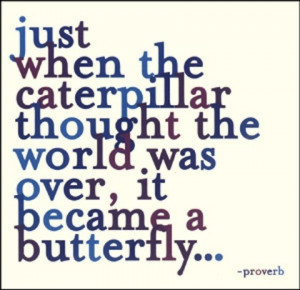 butterfly strength picture quote