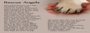 Animal Rescue Quotes And Sayings picture
