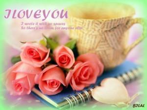 ... best-top-desktop-roses-wallpapers-hd-rose-wallpaper-29-pink-roses.jpg
