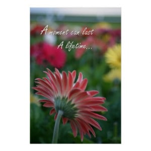 Pink Gerbera Daisy flower quote Poster