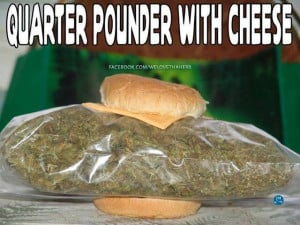 Cheech and Chong veggie version of A Quarter Pounder with Cheese!!! ;p
