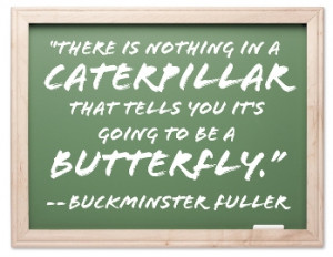 There is nothing in a caterpillar that tells you it's going to be a ...