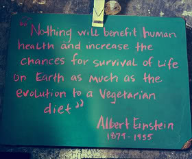Vegetarianism Quotes & Sayings