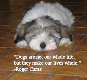 KC's Dog Ecards - Dog Quotes