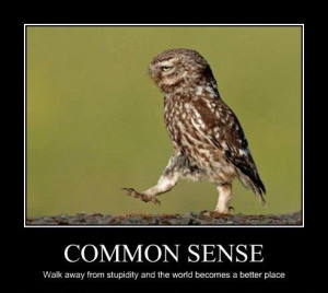 sense funny pictures