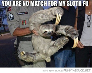 man holding animal claws no match for my sloth fu funny pics pictures ...