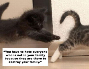 ... your-family-because-they-are-there-to-destroy-your-family-cat-quotes
