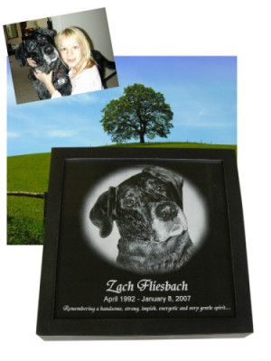 Pet Memorial Keepsake Box Photo Engraved Marble