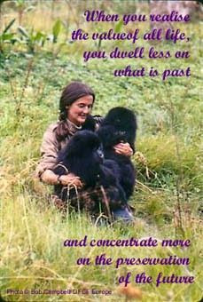 Quotes by Dian Fossey