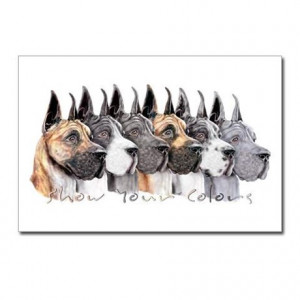 ... > Art Postcards > Great Dane Group Show Colors Postcards (Package of
