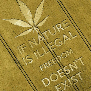 If Nature Is Illegal Freedom Doesn't Exist