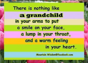 ... family quote family quotes grandparents grandma grandmom grandchildren