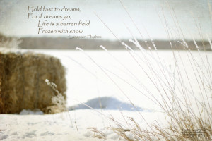 Love Cold Weather Quotes