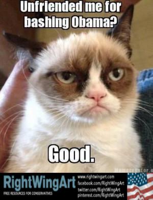 Grumpy cat bashes Obama...