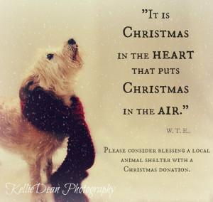 Senior Dog Quotes | visit facebook com