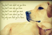 Dog Quotes & Poems / Inspiring quotations and poems about dogs - www ...