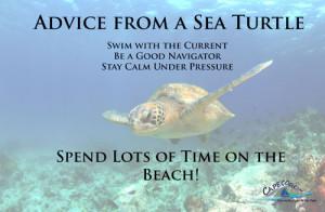 Sea Turtle Sayings