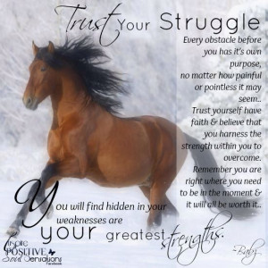 Struggle & strength