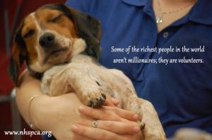 Volunteering #Animal Kindness