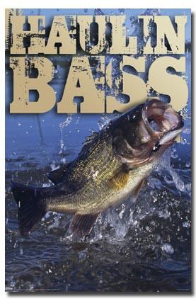 FI-1 Haulin Bass
