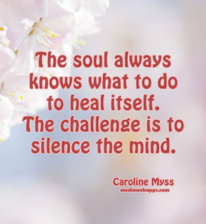 The Soul Always Knows What To Do To Heal Itself - Challenge Quotes