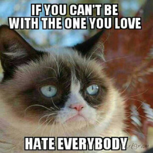 ... cat says, if you can't be with the one you love... hate everybody