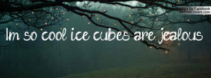 so cool ice cubes are jealous Profile Facebook Covers