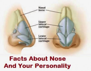 ... nose or hate it but you have to believe these amazing facts about nose