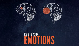 The Psychology of Winning in 20 Interesting and Funny Infographics
