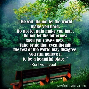 Be soft... Quote from Kurt Vonnegut