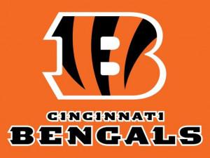 Cincinnati Bengals (Photo: Enquirer)