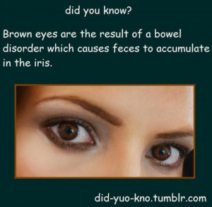 eyes fact brown eyes