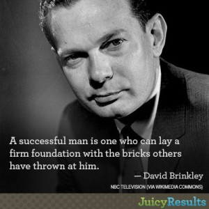 ... have thrown at him david brinkley # quotes # perseverance # success