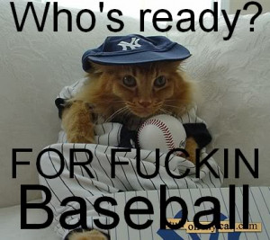 Funny Baseball Yankees Graphics, Wallpaper, & Pictures for Funny ...