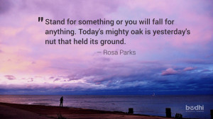 rosa parks quote - 110414 - 1800