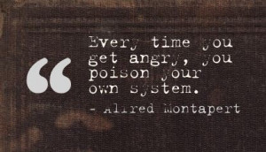 Every time You get angry,You Poison Your Own System ~ Anger Quote