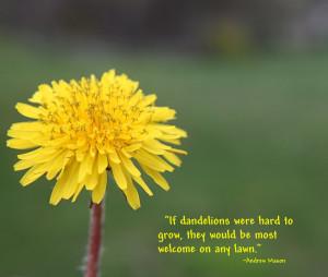 Dandelion Macros