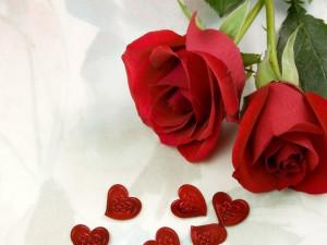Roses-Love