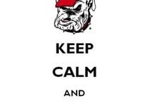 Georgia Bulldogs / For all Dawg fans! / by Angela's Pinning Eye Candy ...